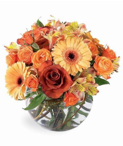Autumn Elegance - orange flowers