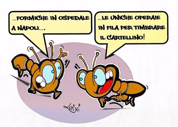 A proposito di formiche, abituali frequentatrici di corsie d'ospedale...