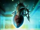 Heart Attack 911: Your Emergency Response Plan - Heart Health Center - Everyday Health