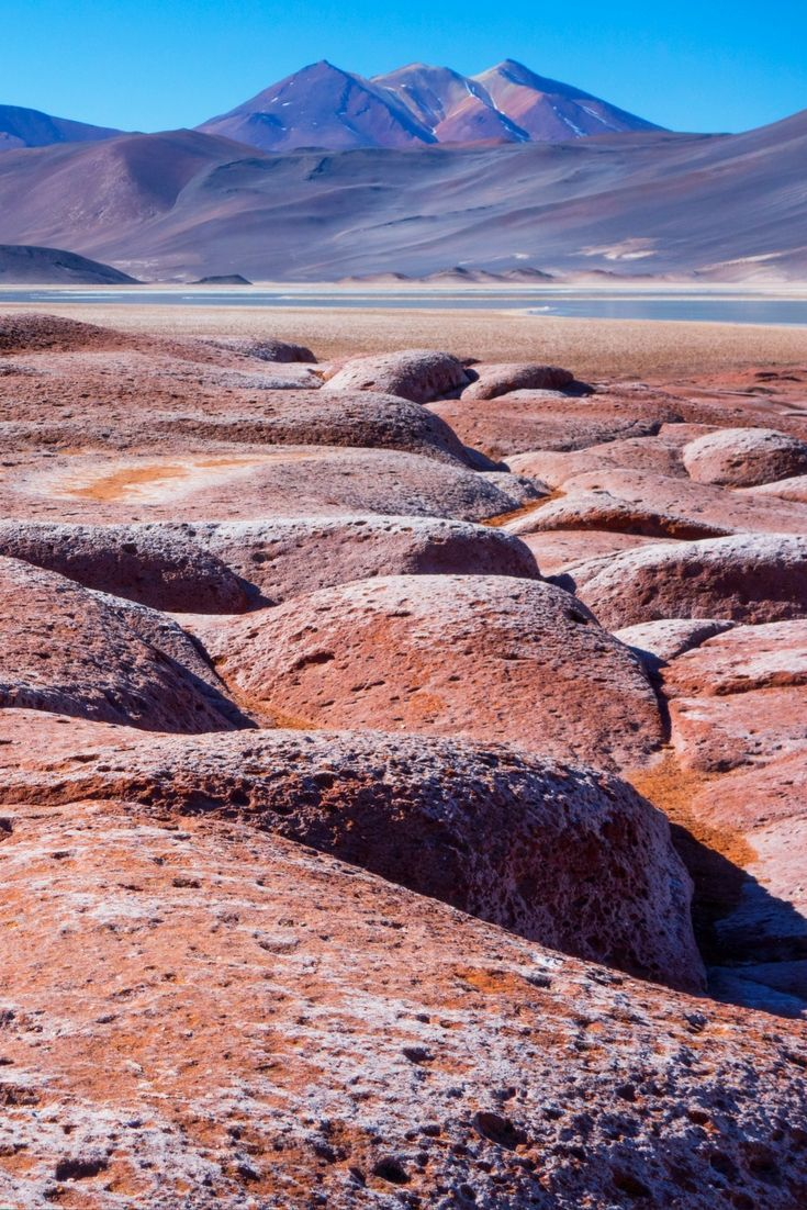 Who knew Chile was so beautiful? The landscapes around San Pedro de Atacama are absolutely breathtaking. My favorites: Piedras Rojas (Red Stones) and Salar de Atacama (Atacama Salt Flats) || Photo: Red Stones || Click the post for more information.