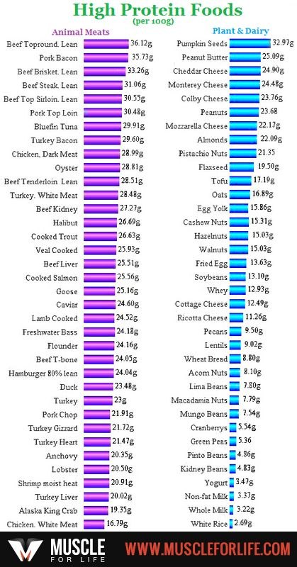 List Of Protein Foods