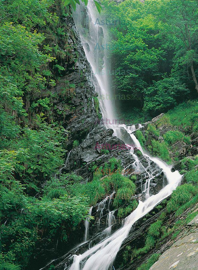"""Cascada """"A Seimeira"""" en primavera, Santa Eulalia de Oscos. Para conocerla nada mejor que realizar la ruta que lleva su nombre. Esta ruta es muy sencilla de realizar y puedes disfurtarla  con niños y mayores."""
