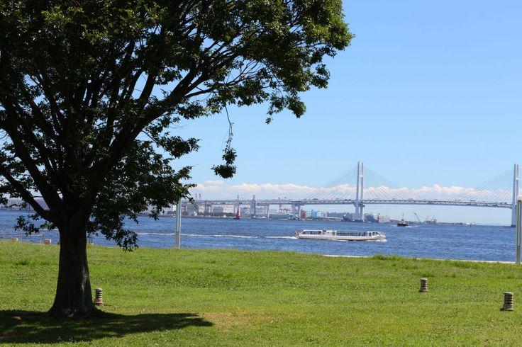 臨港パーク みなとみらい 公園 横浜 海を見ながらくつろぐ