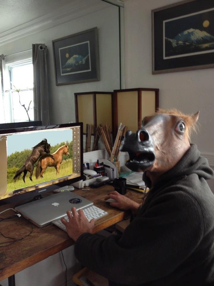 df9e91d36be3b231e067b823464efa7c--horse-head-horse-mask.jpg
