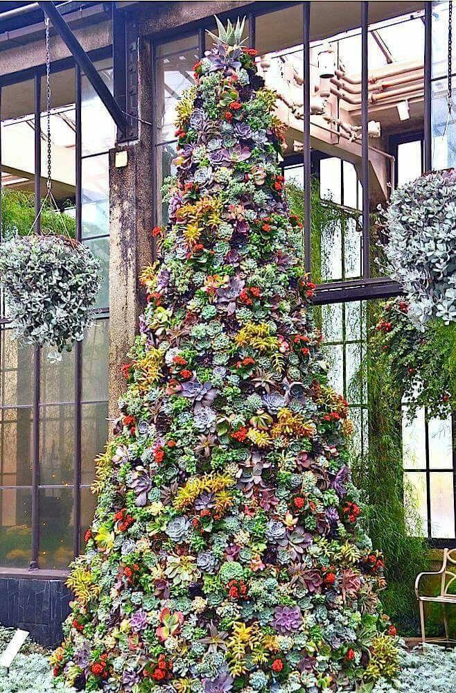 O (succulent) Christmas tree, o (succulent) Christmas tree!  Longwood Gardens  {via: http://www.elblogdelatabla.com}