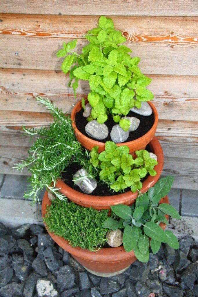 Die Besten 25+ Kräutergarten Balkon Ideen Auf Pinterest Selber   Mini Garten  In Der Kuche