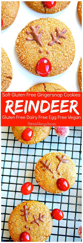 Gluten Free Gingersnap Reindeer Cookies (vegan dairy free) Recipe- Adorable Christmas reindeer cookies with natural red nose. Food Allergy friendly!