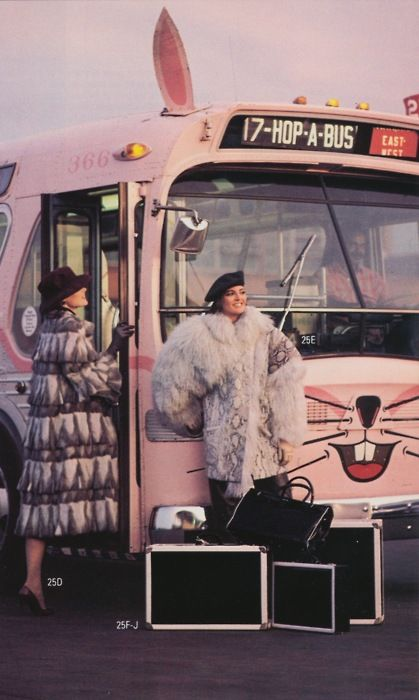 1960s bunny bus
