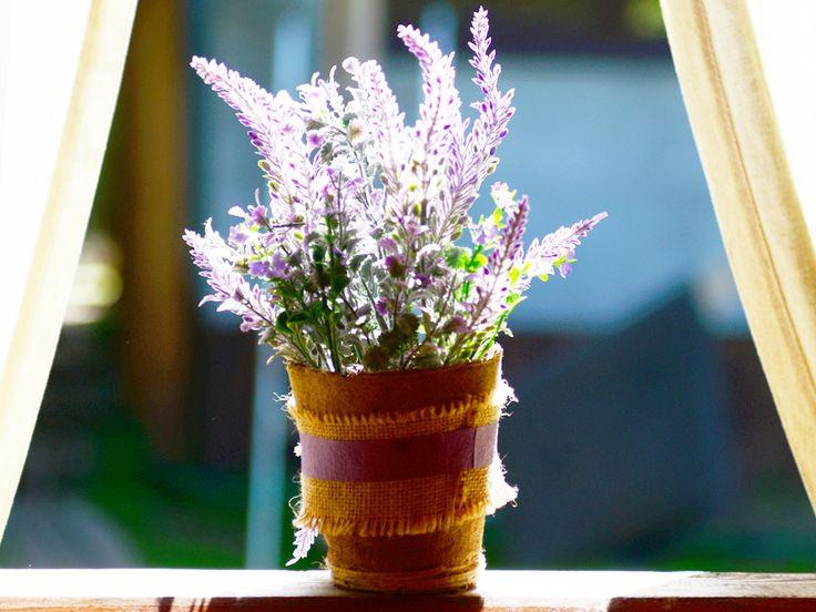 Mücken fernhalten und Mückenstiche vermeiden - das klappt mit diesen acht Pflanzen, die du einfach nur auf Fenster und Balkon stellen