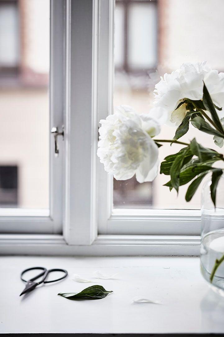Charmante kleine Wohnung in Göteborg mit einzigartigen Details ...