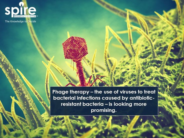 """Phage therapy – the use of viruses to treat bacterial infections caused by antibiotic-resistant bacteria – is looking more promising.  """"#Spire #Healthcare #Phage #Antibiotcs #Bacteria #Trivia """""""