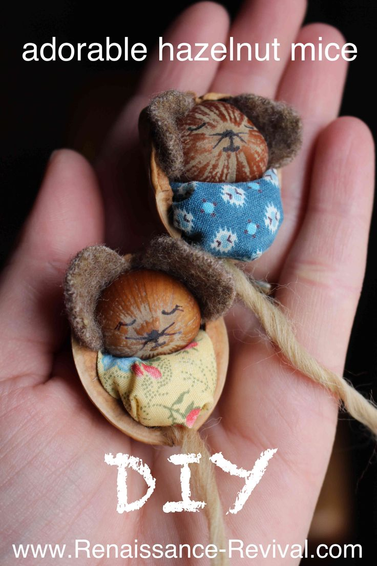 Check out this great craft using a hazelnut and a walnut. Make these adorbale hazelnut mice- sleeping in a walnut shell. An easy DIY for all ages!