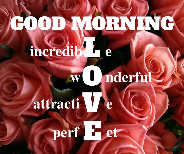 Bast Love Pictures With Good Morning: Best 25+ Morning Love Quotes Ideas On Pinterest