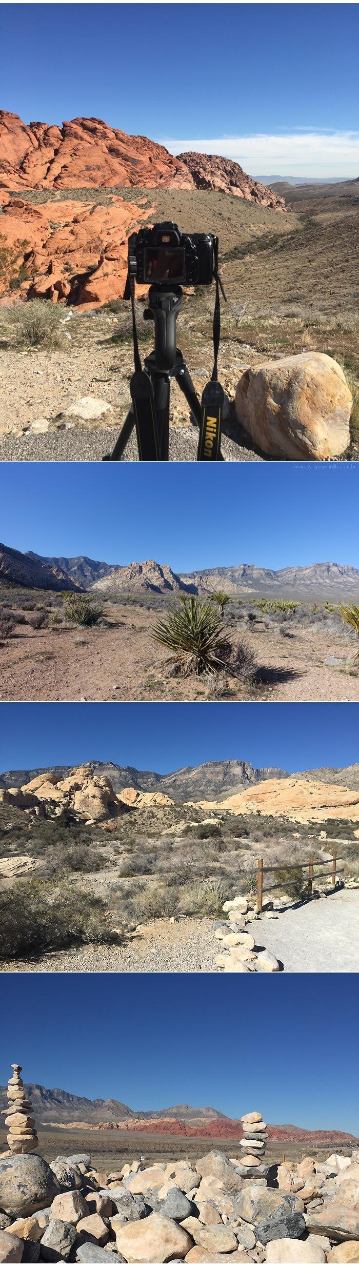 Red Rock Canyon | Um passeio incrível em Las Vegas Leia mais em: http://www.spicyvanilla.com.br/2016/04/red-rock-canyon-um-passeio-incrivel-em-las-vegas/  #turismo #lasvegas #canyon