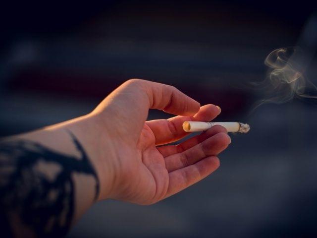 Mari Kampanyekan Hidup Sehat Tanpa Merokok Hidup Sehat Hidup Berita