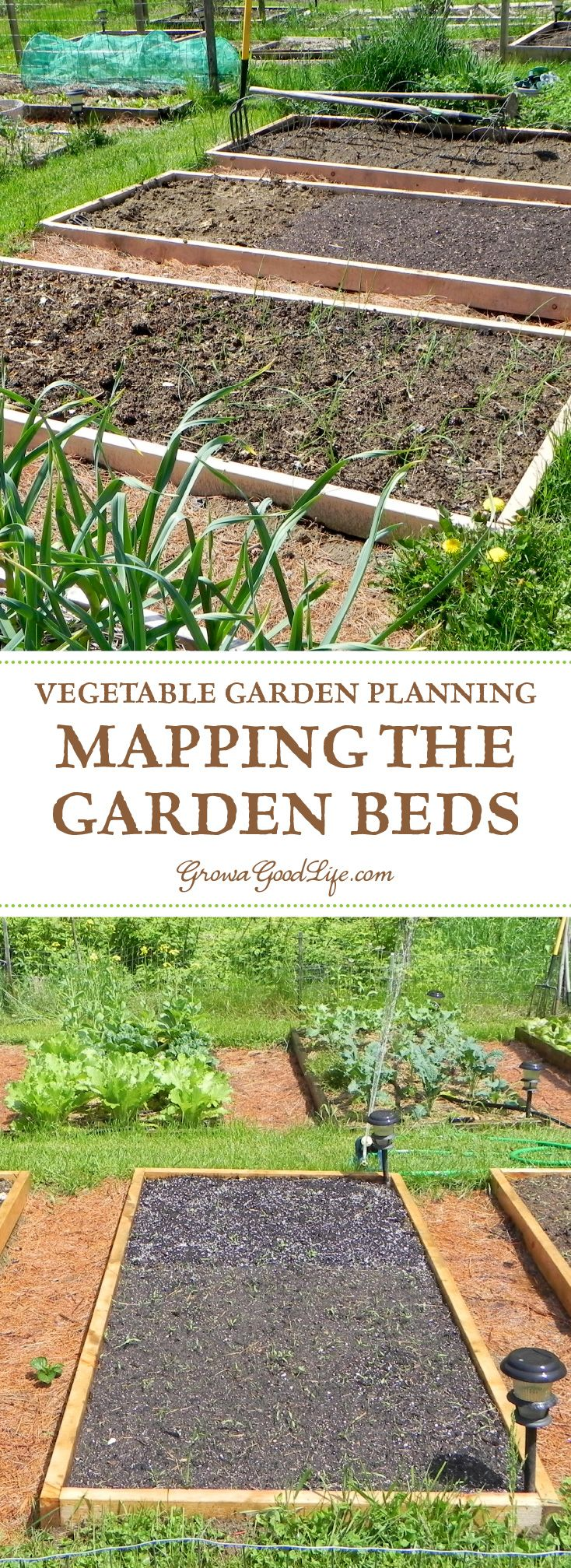 best how does my garden grow images on pinterest