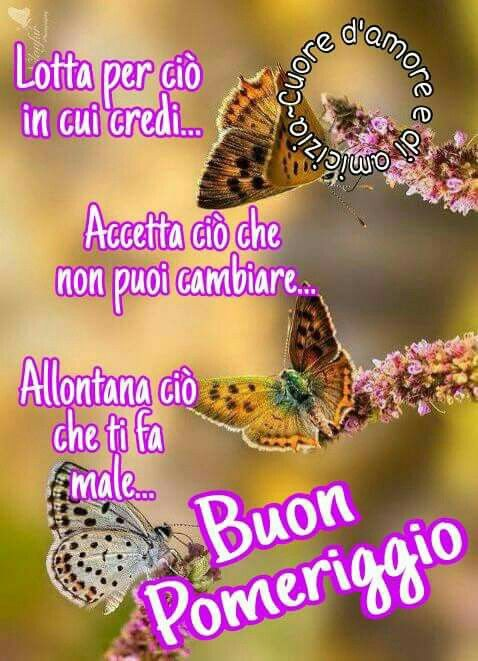 Favorito 93 best BUON POMERIGGIO images on Pinterest | Good afternoon and Om XV53