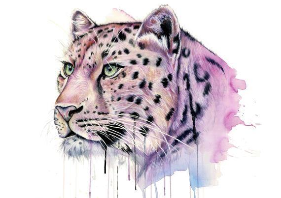 Chat Pink Leopard Art Illustration Illustration D Illustration D