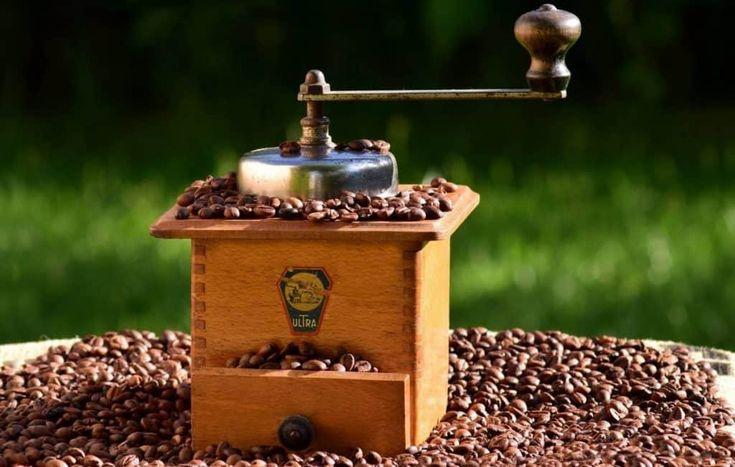 Park Art|My WordPress Blog_Shardor Coffee Grinder How To Use