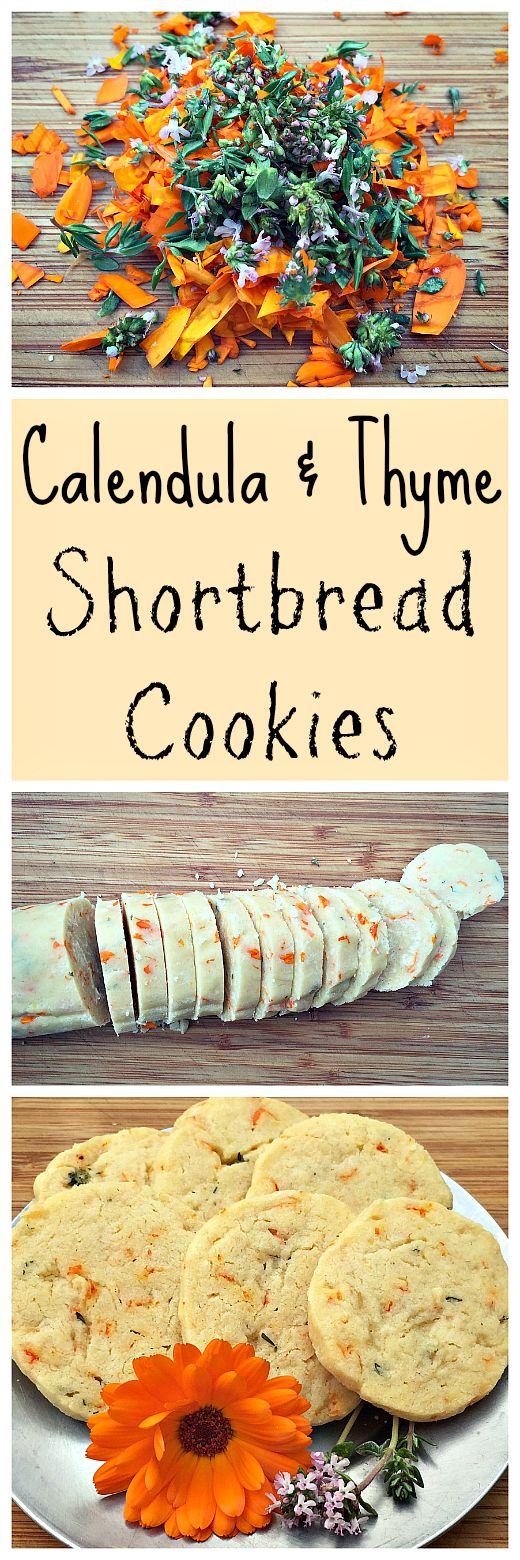 Make delicious flower and herb flavored shortbread cookies with calendula and thyme!