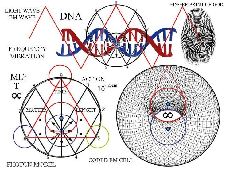 Dna phi vortex energy with images sacred geometry