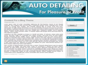 Auto Detailing Niche Website Kit    Full MASTER Resale Rights