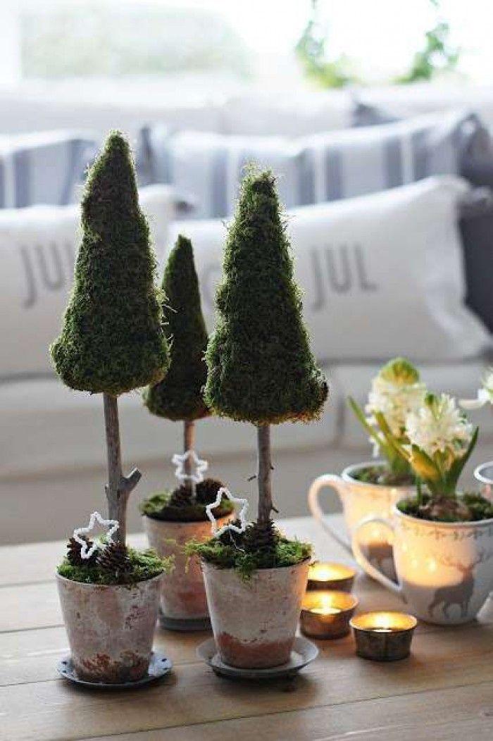 Tafeldecoratie voor de kerst. Deze schattige kerstboompjes van mos zijn simpel te maken door oase in een punt te snijden en het mos erop te spelden. Of het mos vast te wikkelen met ijzerdraad. Op deze manier houdt je het mos langer groen.