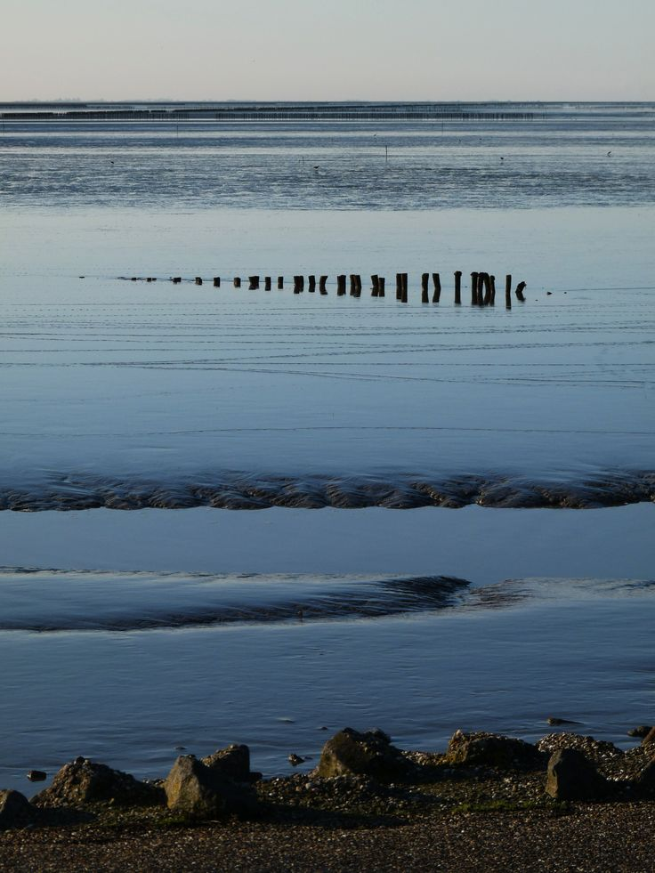 Wadden sea, Holwerd