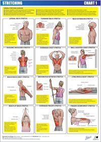 gráfico de alongamento 1 - parte superior do corpo