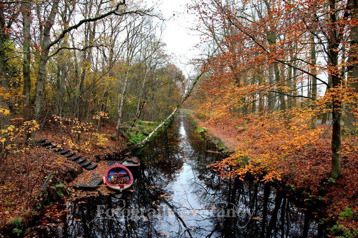 Wat een herfstkleuren gewoon genieten. #geluksmomentje https://fotografiesybrandy.luondo.nl/