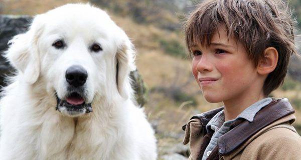 Belle e Sebastien, da ieri al cinema la storia che ha conquistato il mondo. Trailer