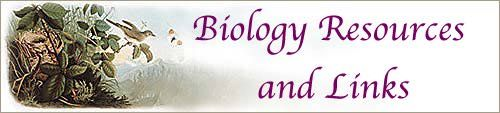 Biology Resources and Links