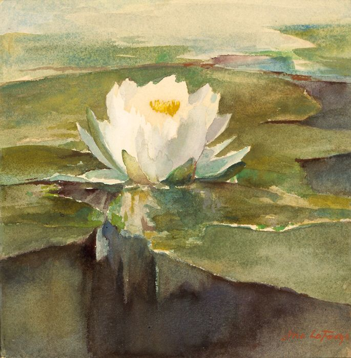 Water Lily in Sunlight, by John La Farge, ca.1883, Watercolour on paper | Smithsonian American Art Museum