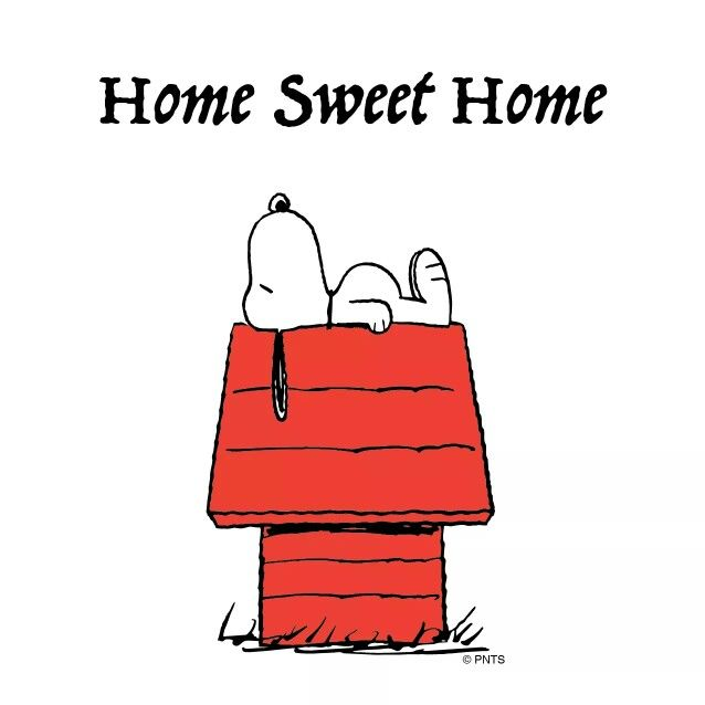 #peanuts #Snoopy                                                       …                                                                                                                                                                                 More