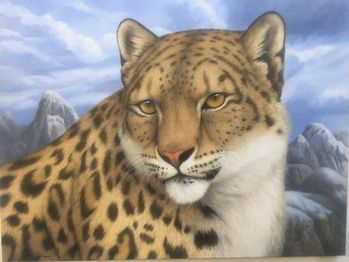 The Rare and Beautiful Snow Leopard - Tom Palmore #jcacciolagalleryw #artsy #1stdibs #contemporaryart