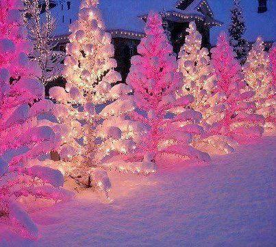Hot pink | christmas fantasy | Pinterest