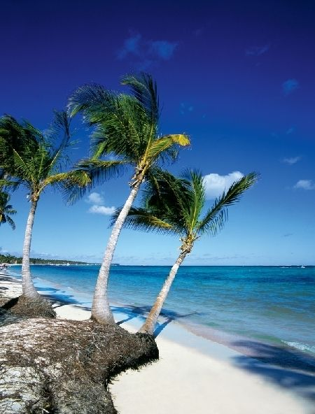 Dominican Republic! We will be there in two months!