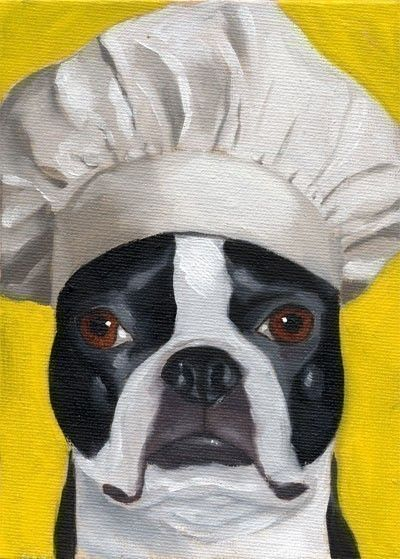 Boston Terrier 101 Hat Series Number 15 Dog Art PRINT