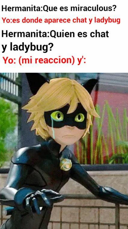 Funny Ladybug Meme : Best memes miraculus ladybug images on pinterest