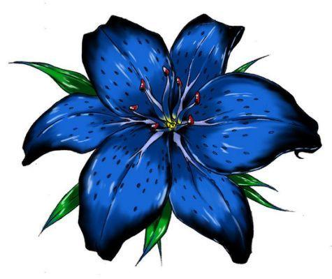 Larkspur Flower  July birth flower