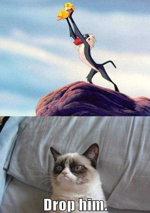 Grumpy Cat watching The Lion King