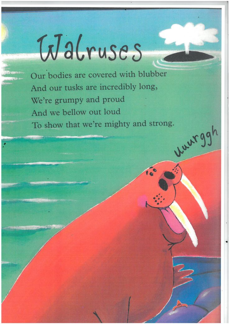 Walrus Poems For Kids Google Search June Preschool