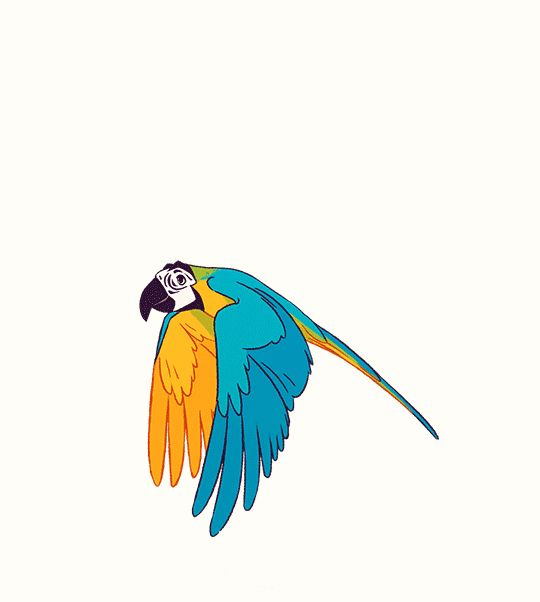 Картинки анимация попугай, смешные календарь живые