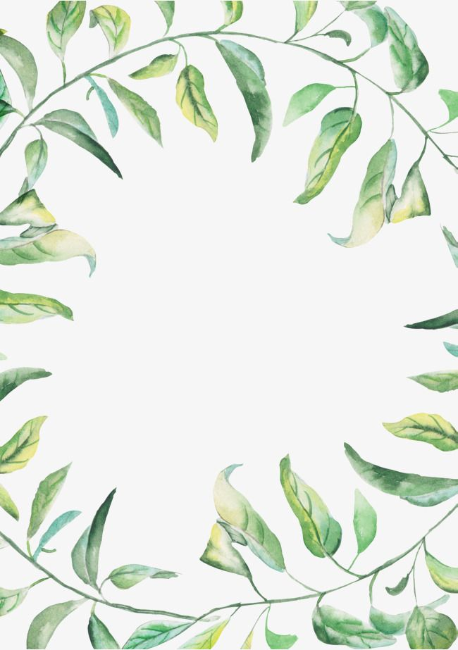 Green Watercolor Border Summer Border Hand Drawn Border Green