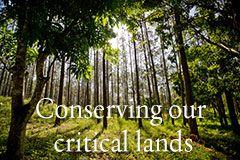 Préserver les terres critiques