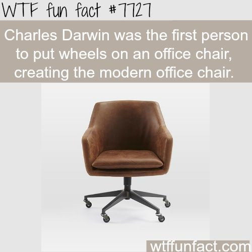 Charles Darwin's inventions - WTF fun facts