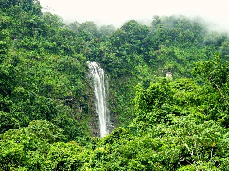 Diamante Waterfall, Dominical Costa Bellana. Costa Rica. Photo via elcastillocr.com