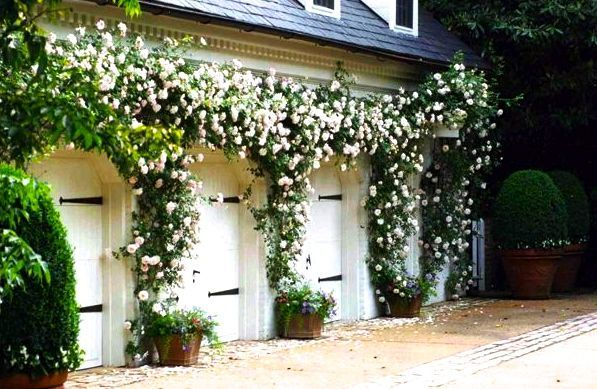 10 best images about 6601 exeter design inspiration on for Beautiful garage doors