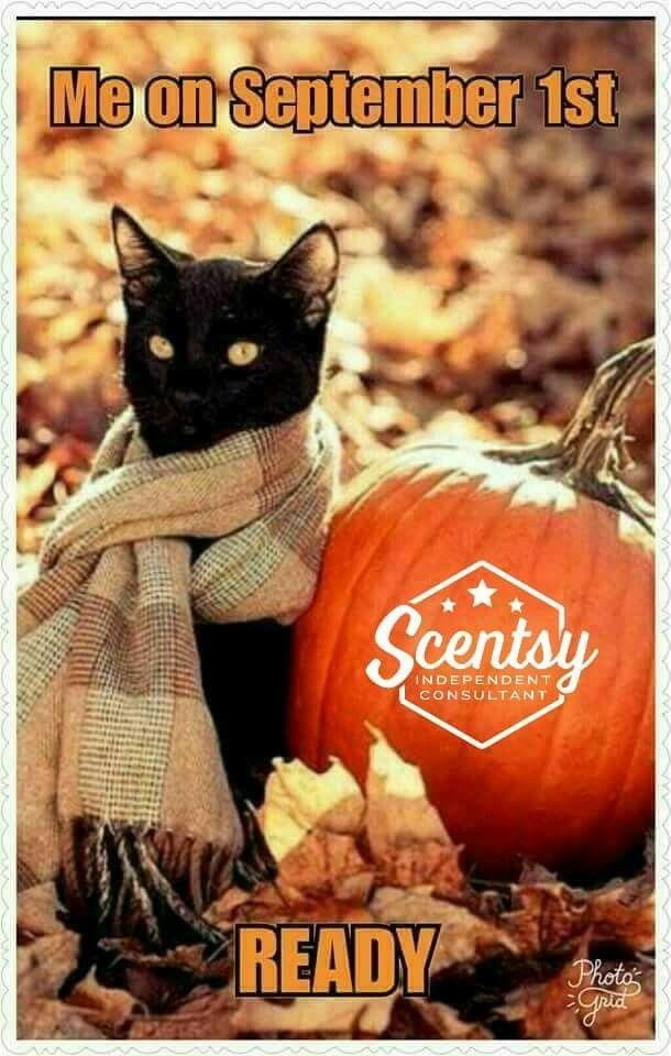 Fall scentsy