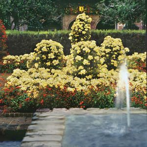 Bellingrath Gardens outside of Mobile  Alabama38 best Bellingrath Gardens images on Pinterest   Alabama  . Mobile Alabama Botanical Gardens. Home Design Ideas